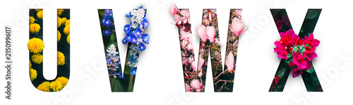 Cadres-photo bureau Fleur Flower font Alphabet u, v, w, x, made of Real alive flowers with Precious paper cut shape of letter. Collection of brilliant flora font for your unique decoration in spring, summer & many concept idea