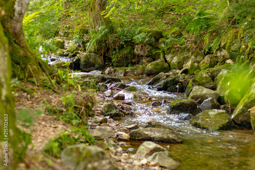 Fototapety, obrazy: TODTNAU, GERMANY - JULY 23 2018: Todtnau Waterfall in the Middle of the Beautiful Black Forest