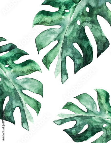 Tropical summer card. Abstract print. Watercolor leaf. Hand drawn illustration Wall mural