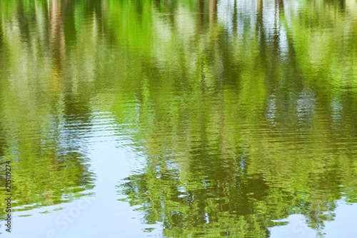 obraz PCV abstract colorful of tree reflection on the water
