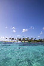 St Vincent And The Grenadines, Tobago Cays, Petit Tabac