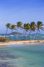 St Vincent And The Grenadines, Mayreau, Saltwhistle Bay
