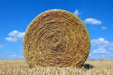 Round Bale Of Straw On A Stubb...