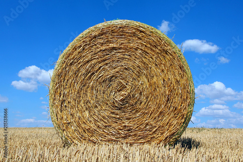 Fotografie, Obraz Round bale of straw on a stubble field and blue sky