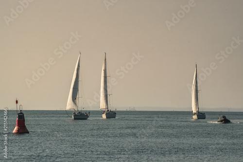 Fotografía  Segelschiffe in Formation