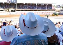 Cowboy Hats At Rodeo