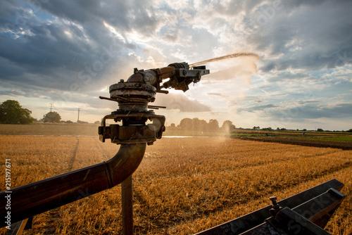 Fotografie, Obraz  künsliche Bewässerung in der Landwirtschaft, Versorgung von Kulturland mit Wasse