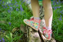 Young Girl Playing Balancing O...