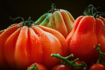 schöne, reife Ochsenherz- Tomaten mit Wassertropfen auf dunklem Hintergrund.