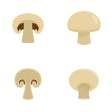 Champignon Mushroom Icons Set. Flat Illustration Of 4 Champignon Mushroom Vector Icons Isolated On White