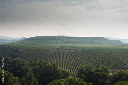 Spoed Foto op Canvas Khaki Lines in the Landscape