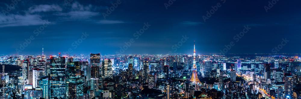 Fototapety, obrazy: 東京の夜景