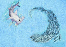 A Hammerhead Shark And School Of Fish. Hand Painted Mixed Media Image. A Simple Concept Of Underwater World, A Predator And Victim