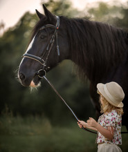 Little Girl With Shire Horse