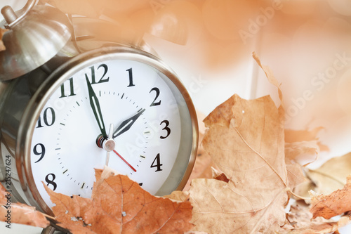 Alarm clock in fallen autumn leaves with shallow depth of field Tablou Canvas