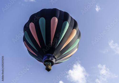 In de dag Ballon Hot Air Ballooning Festival