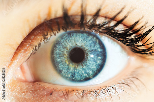 Cadres-photo bureau Iris macro blue eyes