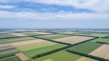 Aerial View Of Fields With Var...