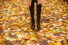 Woman Jumping Among Fallen Yellow Leaves