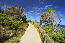 Path To Viewpoint, The Arch, Port Campbell National Park, Great Ocean Road, Victoria, Australia