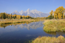 Schwabacher Landing With Teton Mountain Range In Background, Autumn, Jackson Hole, Grand Teton National Park, Wyoming, USA