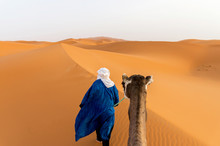 Rear View Of Berber And Camel Walking Through Dunes