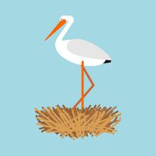 Stork In Nest Isolated. Bird V...