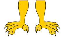 Paws Of Eagle Isolated. Feet Hawk. Vector Illustration