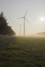 Wind Turbines In Morning Mist,...
