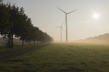 Wind Turbines In Morning Mist,...