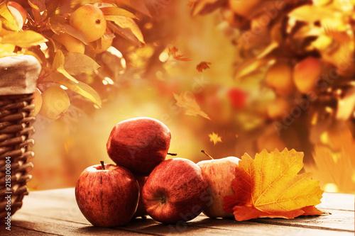 Fototapeta jabłko jesienne-jablka