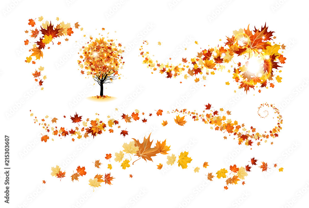 Fototapety, obrazy: Fall decor elements