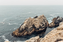 Rugged Rocks With Various Birds By An Ocean Cliff