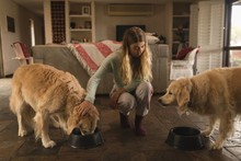 Girl Feeding Her Dogs At Home