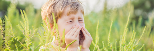 Boy sneezes because of an allergy to ragweed BANNER, long format Wallpaper Mural