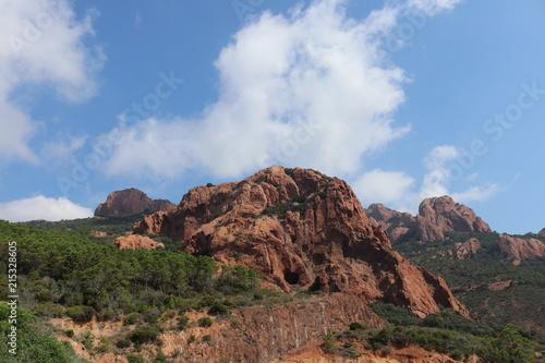 Fotobehang Diepbruine Summer landscape