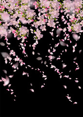 Naklejka Na lodówkę Spring Cherry Blossom
