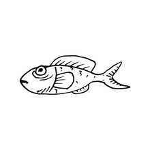 Hand Drawn Fish Doodle. Sketch Style Icon. Decoration Element. Isolated On White Background. Cartoon Design. Vector Illustration
