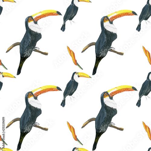 wzor-toucan-bezszwowy-bialy-wzor-z-pieprzojadami-dlon-akwarela-dziki-kwiat