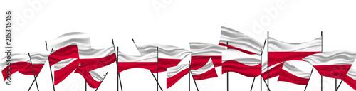 Ταπετσαρία τοιχογραφία Cheering crowd with Poland national flags. The flag of Poland.