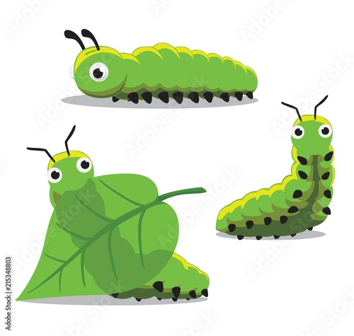 Cuadros en Lienzo  Insect Caterpillar Cartoon Vector Illustration