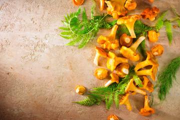 Raw wild chanterelle mushrooms on old rustic table background. Organic fresh chanterelles background. Border design