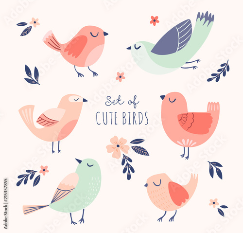 Set of cute vector birds with flowers and leaves. Spring, summer illustration with cartoon funny birds.  Wall mural