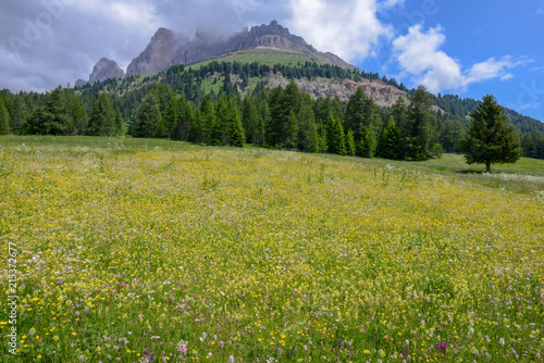 Landscape at Pass Costalunga on Trentino Alto Adige, Italy