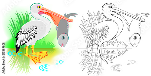 Pelican Bird Silhouette Clip Art - Black And White Transparent PNG