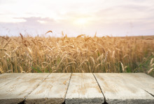 Wheat Field With Wood Planks. ...