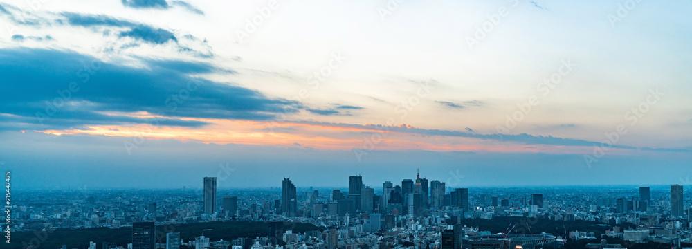 Fototapeta 東京の景観