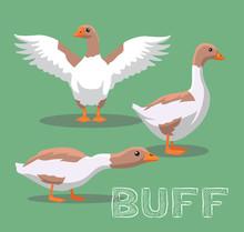 Domestic Goose Buff Cartoon Vector Illustration