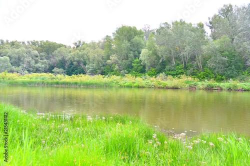 Deurstickers Groene Morning on the river