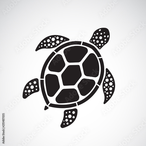 Obraz na plátně Vector of turtle design on a white background